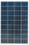 E1) SP-100-P36