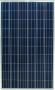 F2) SP-250-P60